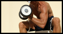 Workout Fitness Magazine Exercises: Arms